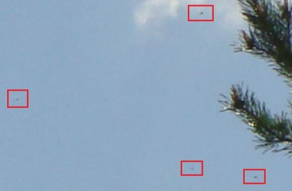 DSC04440-UFOs