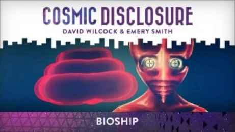 BioShip