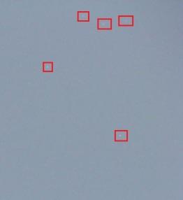 DSC07617 Zoom 2