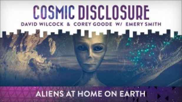 aliens_at_home_on_earth