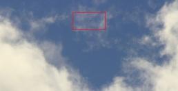 DSC07845 Zoom